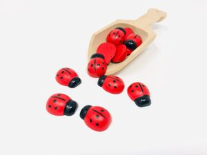 wooden scoop with lady bugs